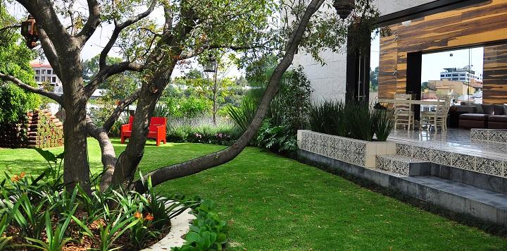 10 claves para decorar jardines y espacios blog de dsigno for Arbol para jardin