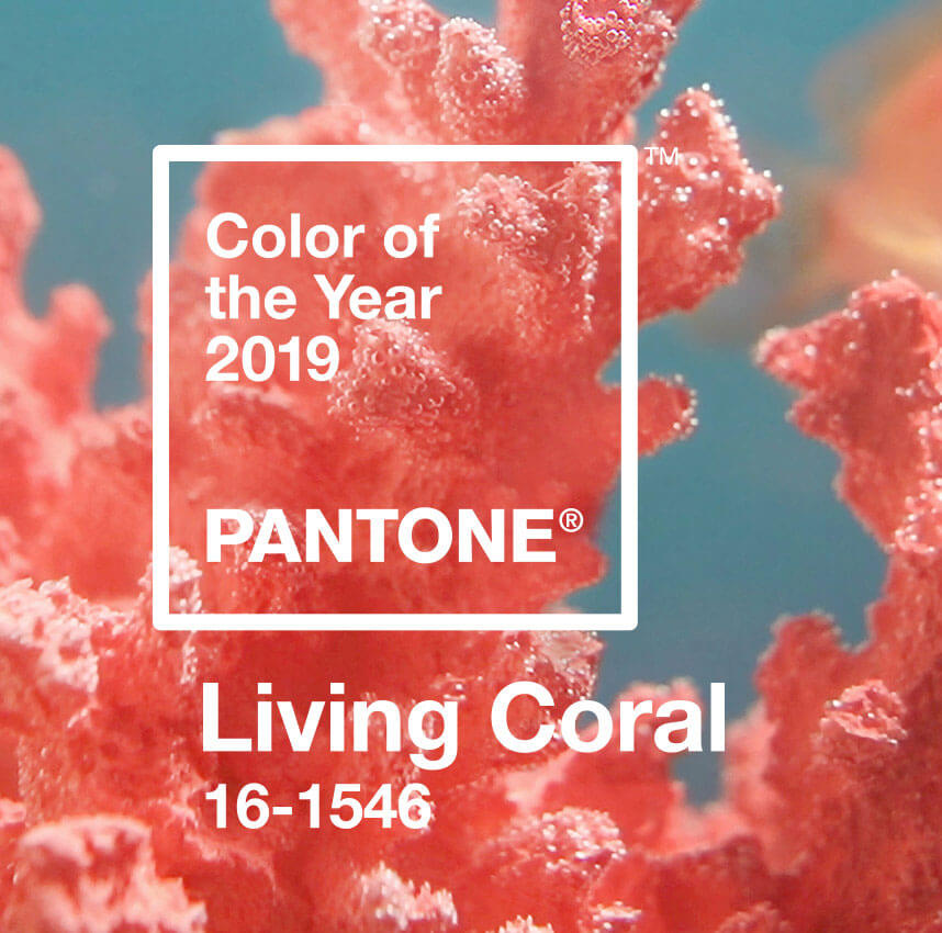 pantone-color-of-the-year-2019-living-coral-banner-mobile-thumb