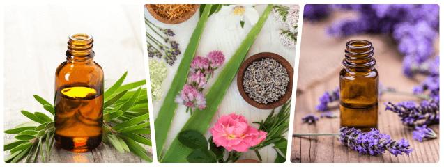 Aromaterapia Tipos De Aceites Esenciales I Blog De DSIGNO